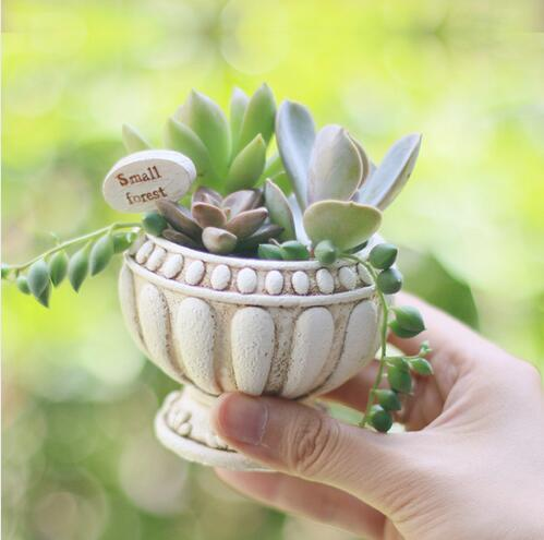 Mini Resin Flower Pots Succulent Plants Pots European Style Home Decoration